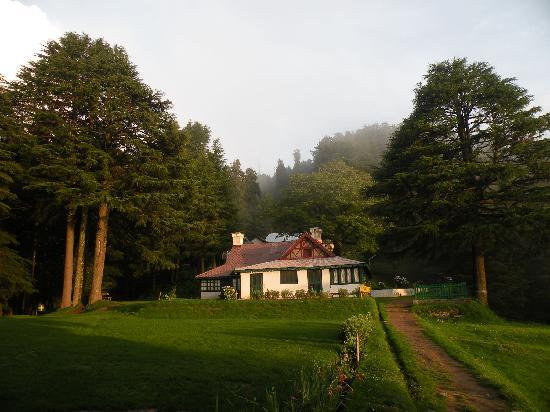Traveltoexplore Kasauli Package